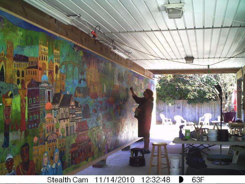 Stealthcam17_11-14-10___34__op_800x600