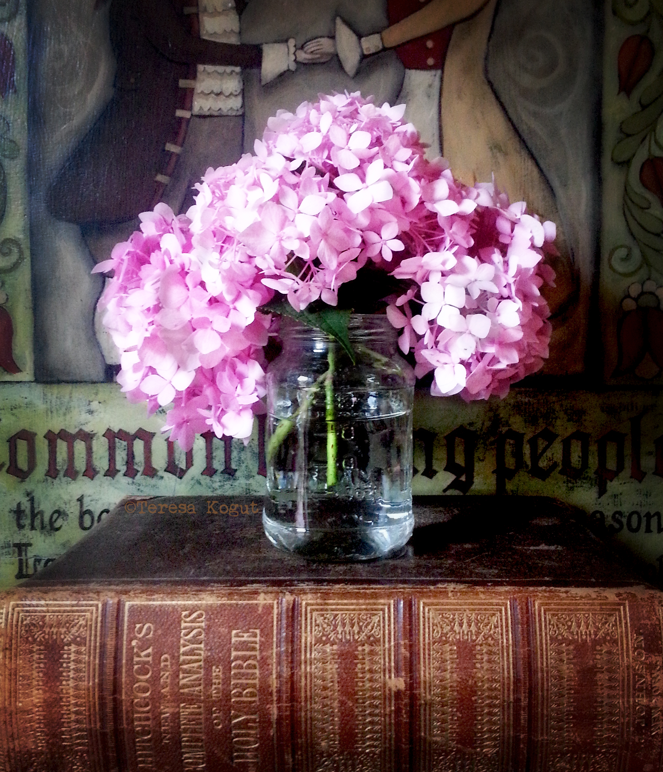 pink hydrangea photo shoot 2