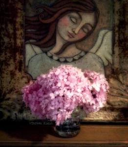 pink hydrangea photoshoot 3